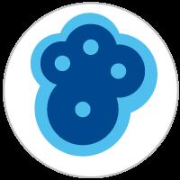 mold inspection logo